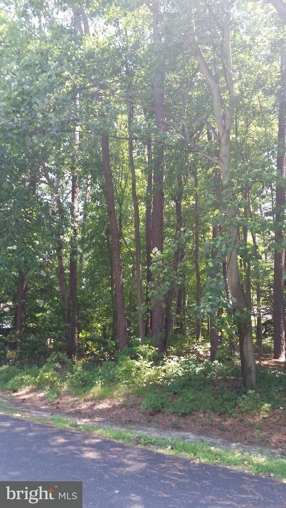 Lot 5 Prince Georges Drive, DAGSBORO, DE 19939 (#1002258222) :: The Windrow Group