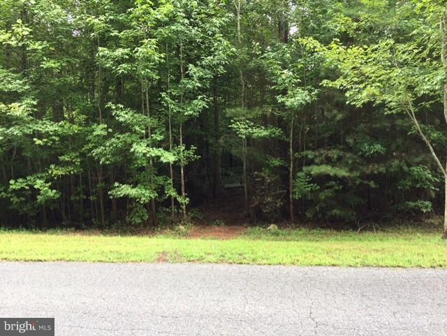 13301 Black Walnut Lane, SPOTSYLVANIA, VA 22551 (#1002276408) :: Advance Realty Bel Air, Inc