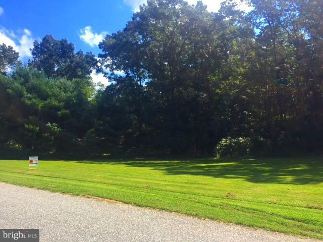 254 Windwood Coves Boulevard, MINERAL, VA 23117 (#1002387712) :: Blue Key Real Estate Sales Team