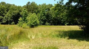 0 Worcester Highway, POCOMOKE CITY, MD 21851 (#1002602666) :: Colgan Real Estate