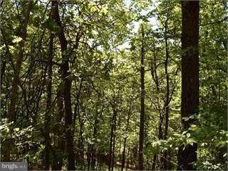 View Drive, FRONT ROYAL, VA 22630 (#1002744236) :: Remax Preferred   Scott Kompa Group