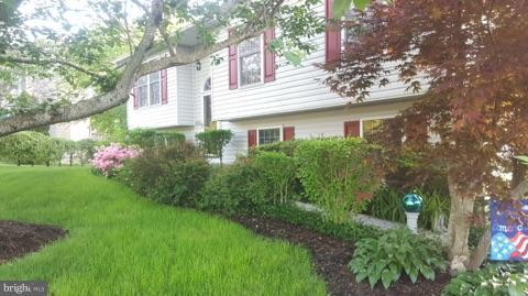 10706 Live Oak Court, FREDERICKSBURG, VA 22407 (#1003097818) :: Colgan Real Estate