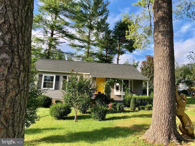 800 Blue Ridge Avenue, MIDDLEBURG, VA 20117 (#1005393576) :: Colgan Real Estate