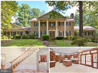 12124 Merricks Court, MONROVIA, MD 21770 (#1006036776) :: Jim Bass Group of Real Estate Teams, LLC