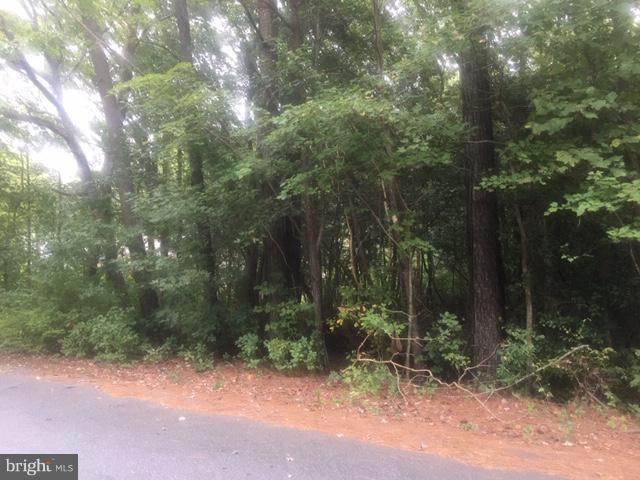 Beaver Dam Circle Lot 11, LEWES, DE 19958 (#1008356108) :: Atlantic Shores Realty