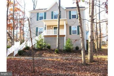 301 Sycamore Road, MOUNT JACKSON, VA 22842 (#1009940080) :: AJ Team Realty