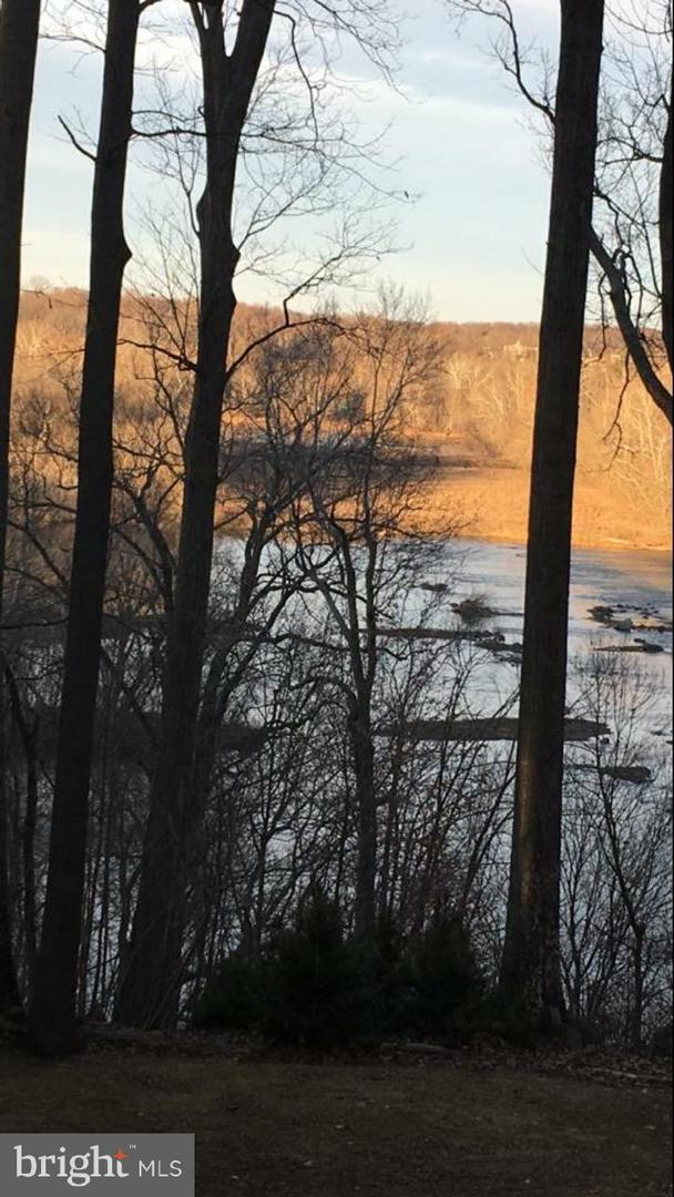 Potomac Ridge Road, GREAT FALLS, VA 22066 (#1009941280) :: Browning Homes Group
