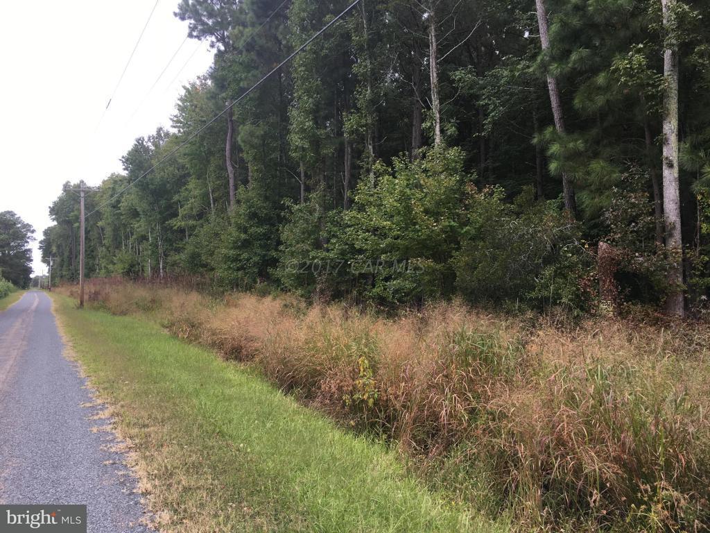 Price Road - Photo 1