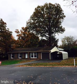 808 Douglas Street, FREDERICKSBURG, VA 22407 (#VASP100412) :: Bob Lucido Team of Keller Williams Integrity
