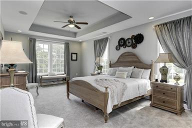 Megan Lane- Tulane, STEPHENSON, VA 22656 (#VAFV121604) :: Colgan Real Estate
