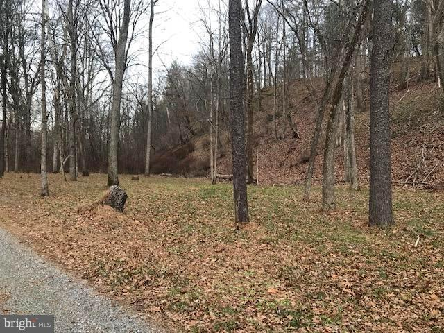 Lot 101 Mossy Oaks Road, YELLOW SPRING, WV 26865 (#WVHS105602) :: Eng Garcia Grant & Co.