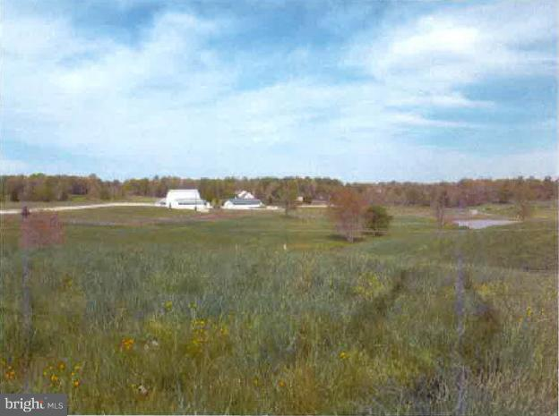 Still Pond Lane, CULPEPER, VA 22701 (#VACU119836) :: Eng Garcia Grant & Co.