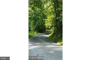 Furnace Mountain Road, LOVETTSVILLE, VA 20180 (#VALO267518) :: Eng Garcia Grant & Co.