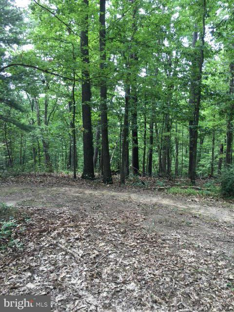 0 Western Court, HEDGESVILLE, WV 25427 (#WVMO108610) :: Homes to Heart Group