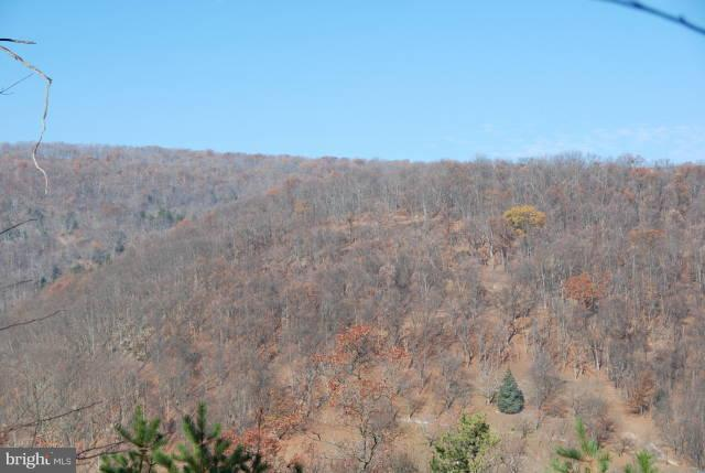 Scotts Ridge Drive Tract 1, FISHER, WV 26818 (#WVHD102086) :: Hill Crest Realty