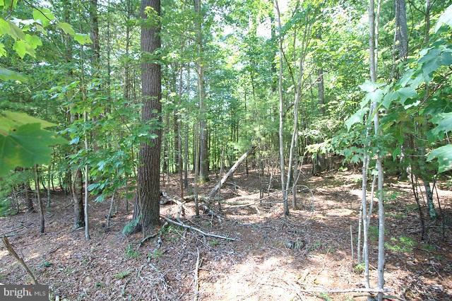 Lot 7 Slate Rock Pass Road, WARDENSVILLE, WV 26851 (#WVHD102088) :: SP Home Team
