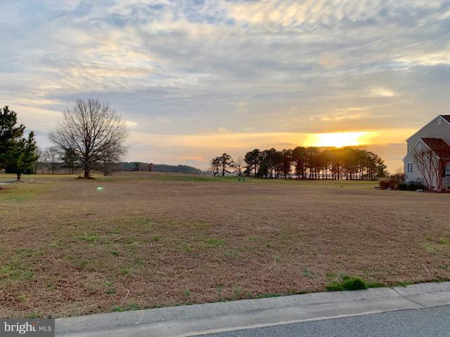 0 Southhampton Drive Lot 17, BISHOPVILLE, MD 21813 (#MDWO102900) :: The Allison Stine Team