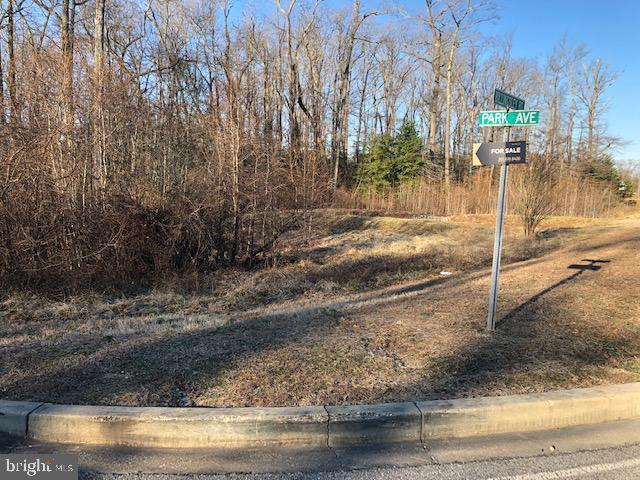 Lot 2 Park Ave, WHITE PLAINS, MD 20695 (#MDCH184096) :: CR of Maryland