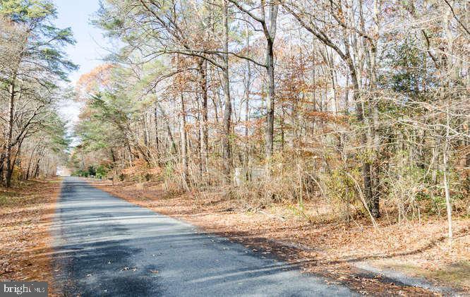 Lot 19 Mason Road - Photo 1