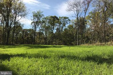 Copperhead Lane, HEDGESVILLE, WV 25427 (#WVBE159920) :: Pearson Smith Realty