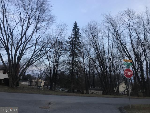 Manor Drive, WOODBINE, MD 21797 (#MDCR181564) :: Bob Lucido Team of Keller Williams Integrity