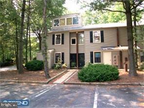 901 Bromley Estate, PINE HILL, NJ 08021 (#NJCD346000) :: Ramus Realty Group