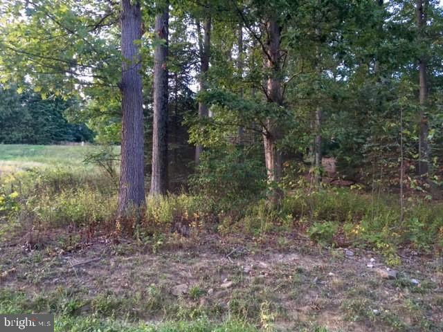 Lot 1 Ken Lin Drive, DILLSBURG, PA 17019 (#PAYK110344) :: The Heather Neidlinger Team With Berkshire Hathaway HomeServices Homesale Realty