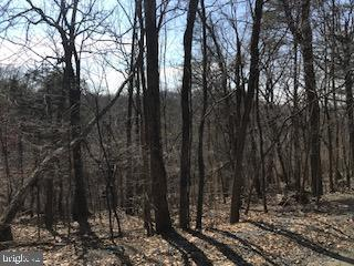 Lot 43 Long Leaf, HARPERS FERRY, WV 25425 (#WVJF131974) :: Pearson Smith Realty