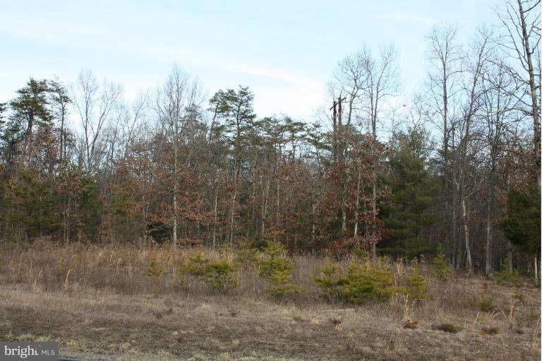 Springwood Lot 31 Lane - Photo 1