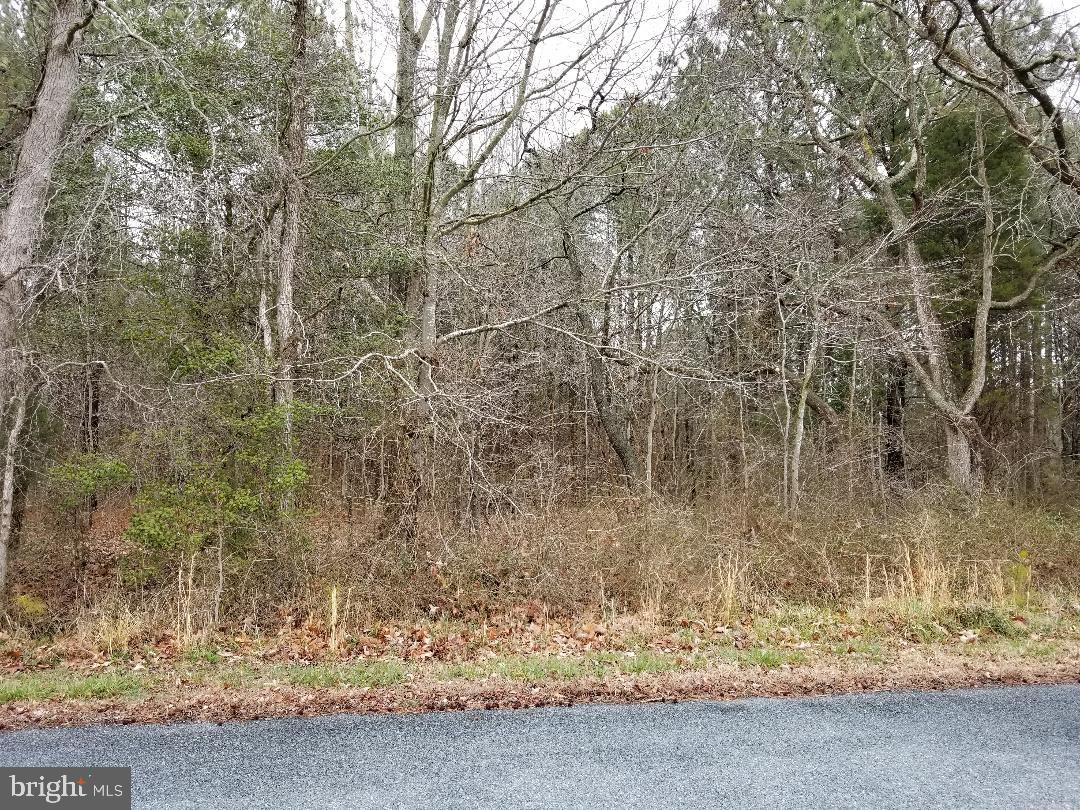 0 Cedar Landing Drive - Photo 1