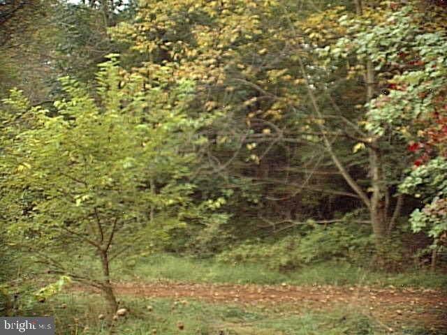 5074 Susquehanna Trail - Photo 1