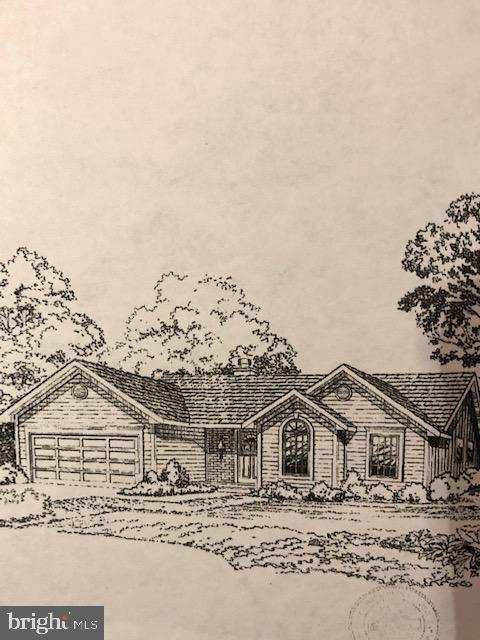 19047 Carey Lane, GEORGETOWN, DE 19947 (#DESU134988) :: Brandon Brittingham's Team