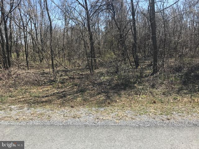 Lot # 26 Apple Jack Court, MERCERSBURG, PA 17236 (#PAFL164346) :: The Heather Neidlinger Team With Berkshire Hathaway HomeServices Homesale Realty