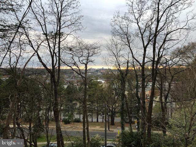 2631 S Arlington Ridge Road, ARLINGTON, VA 22202 (#VAAR147374) :: Viva the Life Properties