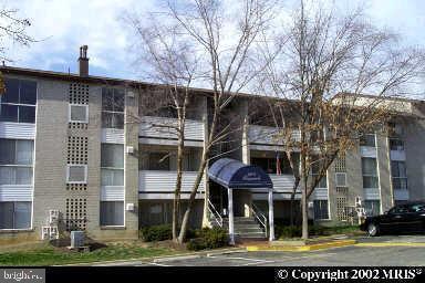 5608 Bismach Drive #201, ALEXANDRIA, VA 22312 (#VAFX1052420) :: Cristina Dougherty & Associates