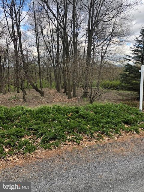lot 37 Castlegreen Drive, GREENCASTLE, PA 17225 (#PAFL164766) :: Blue Key Real Estate Sales Team