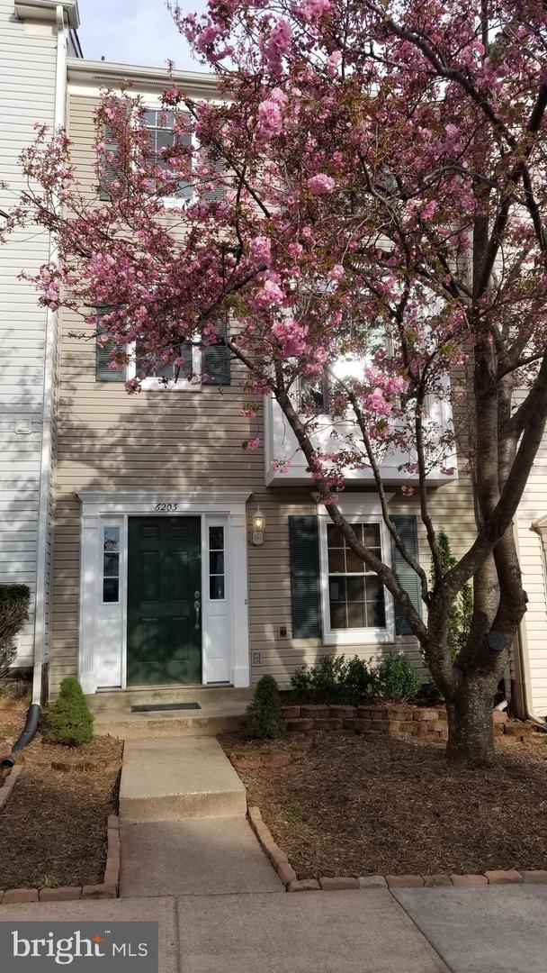 6203 William Mosby Drive, CENTREVILLE, VA 20121 (#VAFX1054700) :: The MD Home Team