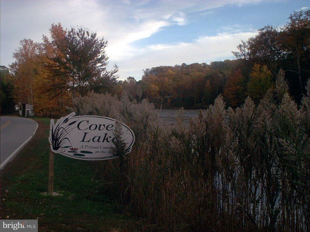 11230 Cove Lake Road - Photo 1