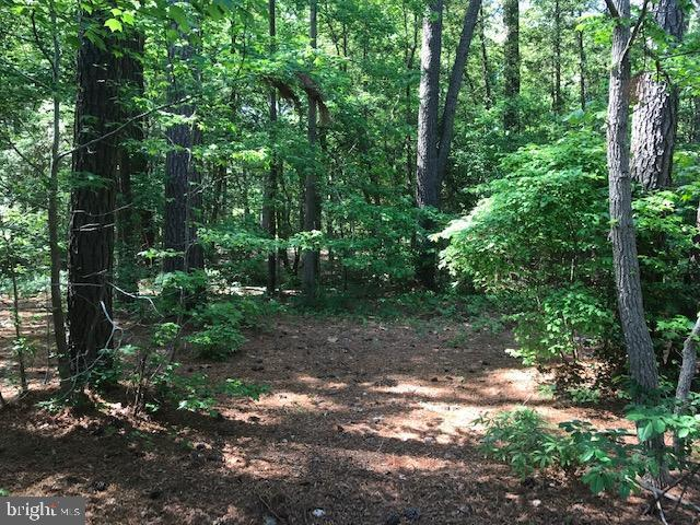 LOT #208 Parrish Loop, MONTROSS, VA 22520 (#VAWE114422) :: ExecuHome Realty