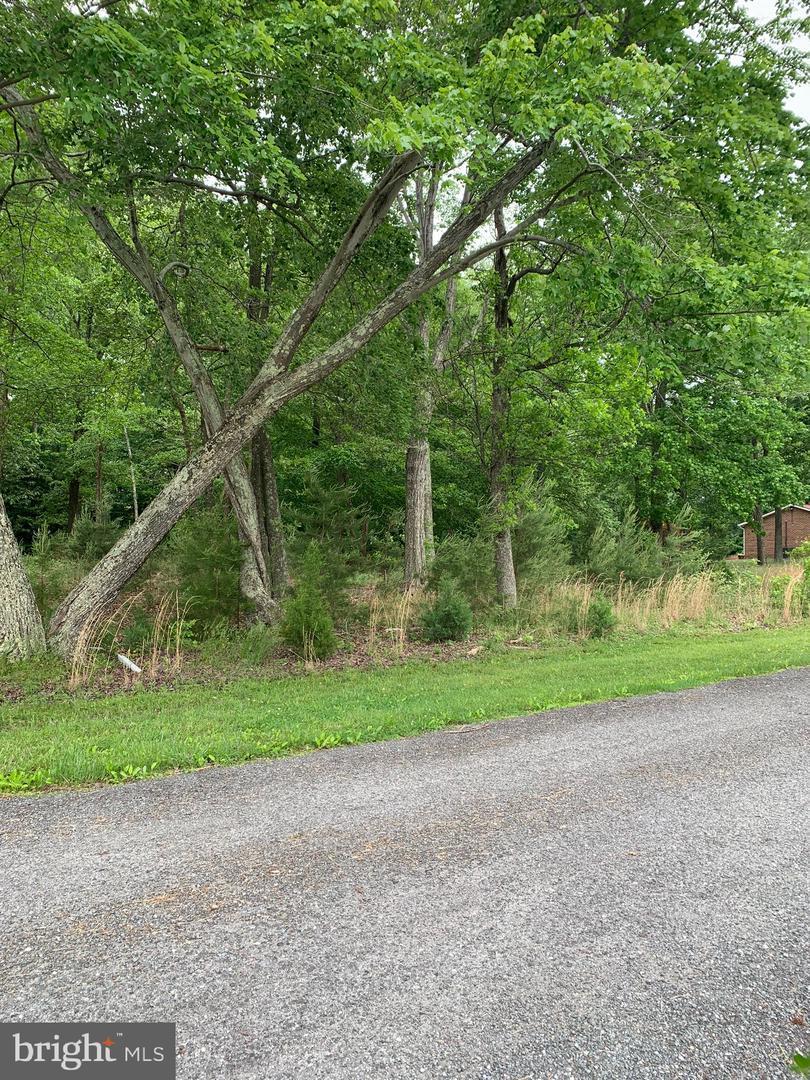 Myers Drive - Photo 1