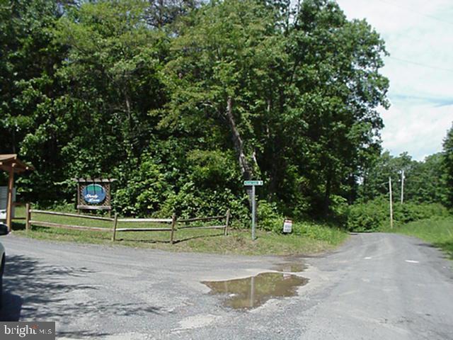 Shady Lane, AUGUSTA, WV 26704 (#WVHS112602) :: The Miller Team