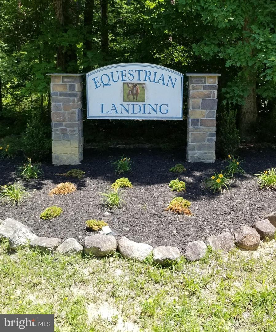 Equestrian Landing Trail - Photo 1
