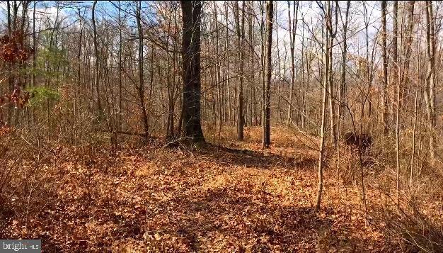 Lot 2 Cannon Hill Heights, HEDGESVILLE, WV 25427 (#WVBE168446) :: Browning Homes Group