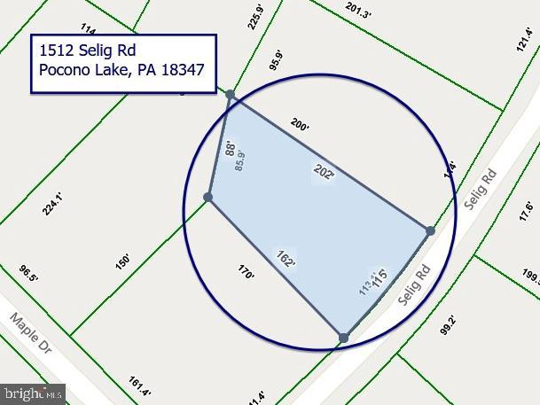1512 Selig Rd, POCONO LAKE, PA 18347 (#PAMR104632) :: Talbot Greenya Group