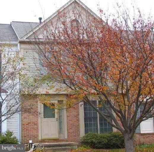 43483 Plantation Terrace, ASHBURN, VA 20147 (#VALO388256) :: Circadian Realty Group