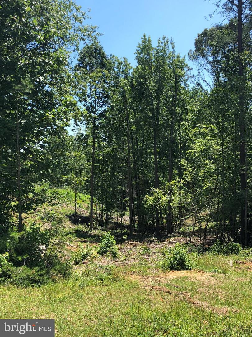 7489 - Lot 108 Resid Dogwood Lane - Photo 1