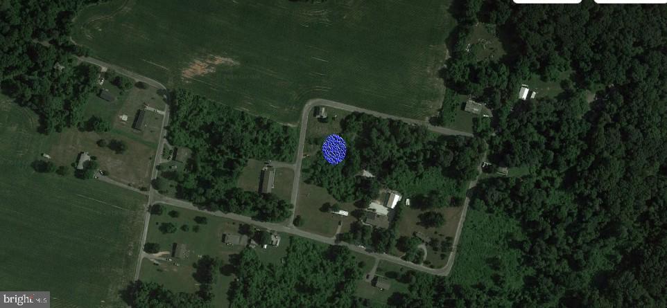 31703 Olivet Circle - Photo 1