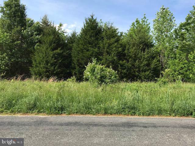 5291 Paynes Mill Road, BUMPASS, VA 23024 (#VALA119556) :: Bruce & Tanya and Associates
