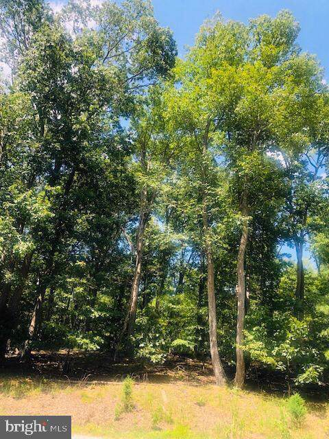 Lot #12 Bench Lane, BLUEMONT, VA 20135 (#VACL110598) :: The Licata Group/Keller Williams Realty
