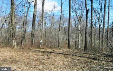 Lot 52-A Darwin Drive, FALLING WATERS, WV 25419 (#WVBE169822) :: The Bob & Ronna Group